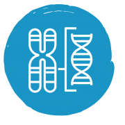 Chromosomes Icon