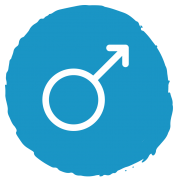 Male Sex Cells Icon