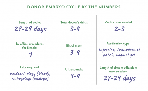 Donor embryo cycle by the numbers